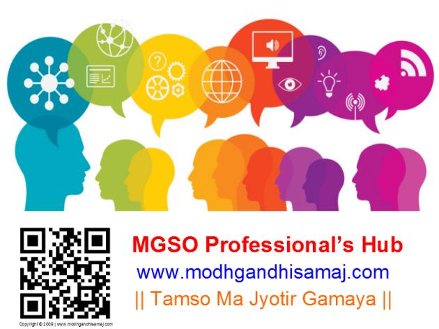 MGSO Professional's Hub